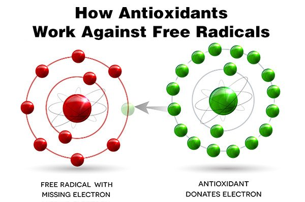 """""""Antioxidants are your body's Protectors against free radical Damage.."""""""