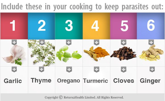 Herbs to Keep Parasites Out